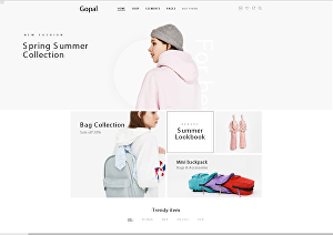 I will Create Shopify and WordPress Website