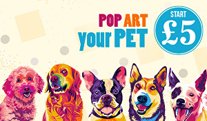 I will create professional cartoon pop art your pet