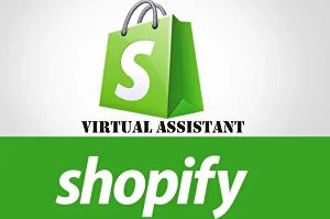I will provide shopify customer service and virtual assistant team