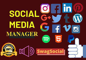 I will be your Social Media Manager for 2 days