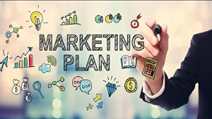 I will craft a profitable digital marketing plan