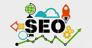 I will provide wordpress seo service for top ranking