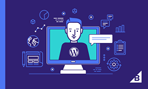 I will make any changes to your Wordpress website