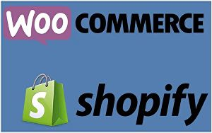 I will setup 10k GBP per month shopify store or shopify website
