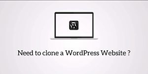 I will clone or duplicate any WordPress websites - two pages
