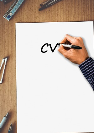 I will write a resume, cover letter or curriculum vitae