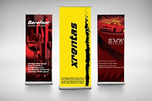 I will design your roller banner and web banner