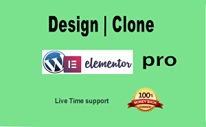 I will design or clone any types of website using elementor Pro