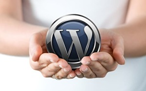 I will install and customize your wordpress themeforest theme
