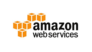 I will help with Any AWS service or server Issue for upto 1 hour