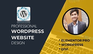 I will create a professional WordPress website with elementor pro and divi