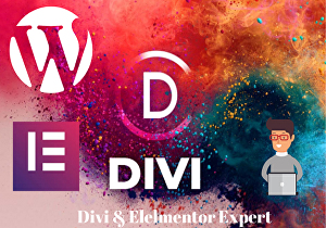 I will build WordPress responsive website using  Divi,  Avada  and Elemetor page builder