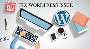 I will do wordpress changes or fix wordpress issue or edit wordpress