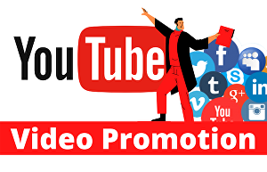 I will do viral organic youtube video promotion with google AdWords