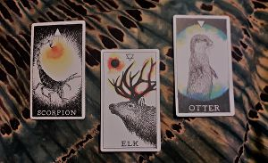 I will pick you 3 Oracle Cards as guidance for your Head, Heart & Soul