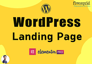 I will design and build a wordpress landing page using elementor pro