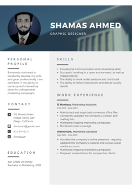 provide professional resume writing service and professional resume design
