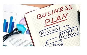 I will write investor ready business plan, proposal with financial projections
