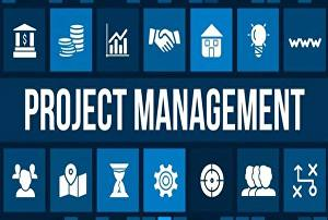 I will do anything on project management