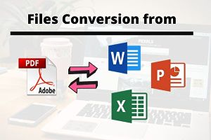I will convert your files to any format