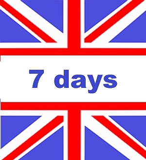 I will send 7 days UNIQUE  UK   Website Traffic Live Analytic with EXTRAS