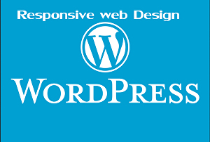 I will build any type of WordPress responsive website