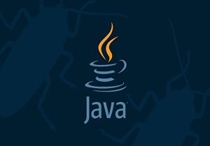I will do java programming for you