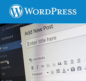 I will install a WordPress blog on your website