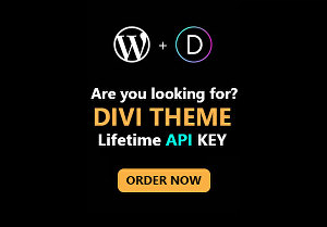 I will install Divi theme with lifetime API key