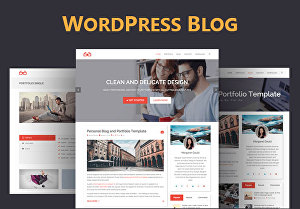 I will build wordpress blog