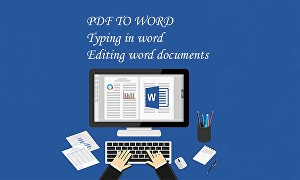 I will do typing in word, PDF to word, edit word documents