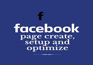 I will create, setup and optimize facebook fan or business page