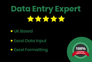 I will do Data Entry into Microsoft Excel or Word