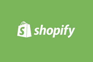 I will Build you a dropshipping shopify store