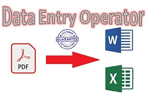 I will do data entry in excel word from any source