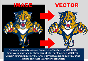 I will Convert image to vector