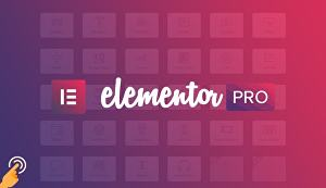 I will clone wordpress website or duplicate any webpages using elementor pro