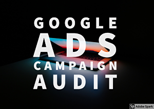 I will audit your google ads campaign