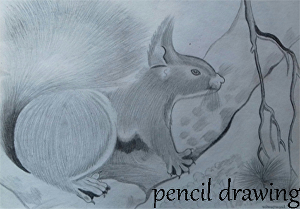 I will make a realistic pencil drawing