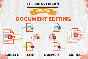 I will convert PDF To Word, Excel Or PowerPoint