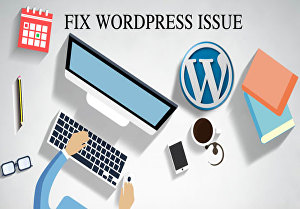 I will fix or update your WordPress website
