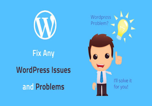 fix or update your WordPress website