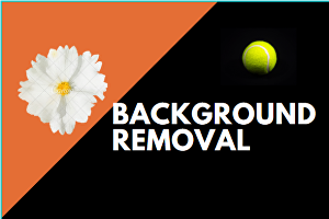 I will edit and remove background from images