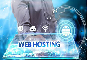 I will provide you managed web hosting with plesk panel