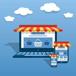 I will create SEO Ready Ecommerce Web store in Magento 1/2 for your Online Business