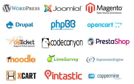 install wordpress, codecanyon, php script or any cms