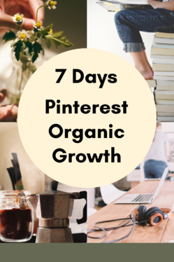 be your Pinterest Manager for 7 days
