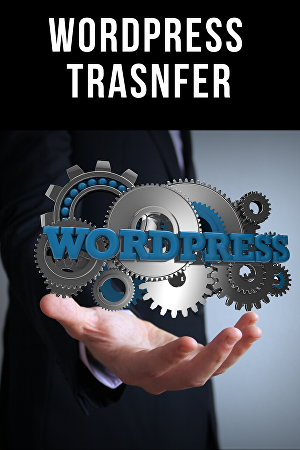 I will transfer your wordpress site