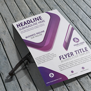 I will design Professional and creative  Flyers or Brochures