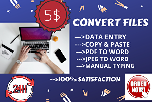 I will convert your file from pdf, image to word